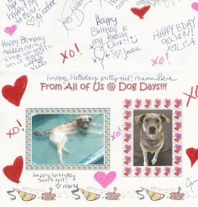 A birthday card from some of Galen's favorite people -- the ladies who play with her at daycare.